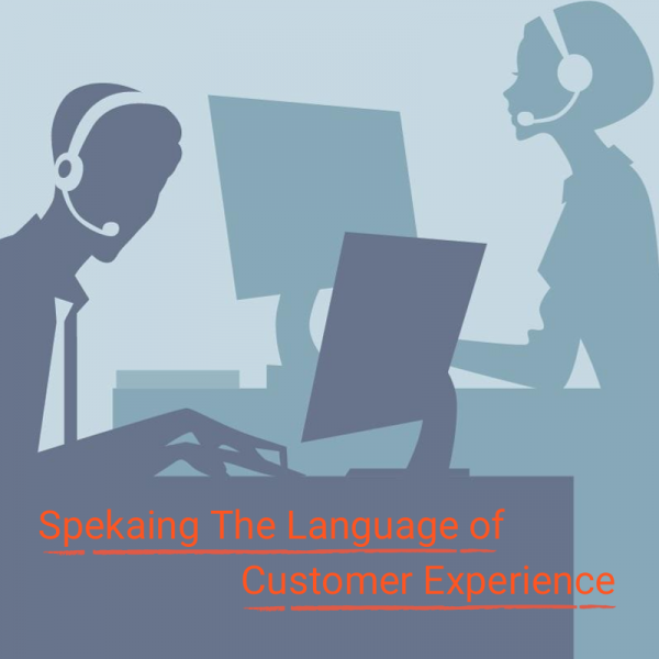 Language of Customer Experience